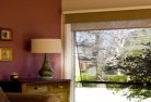 Aberglasslyn Double roller blinds 2